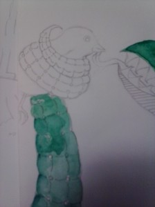 bird_snake
